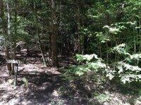 cascade trail.jpg