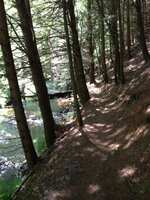 narrow trail.jpg